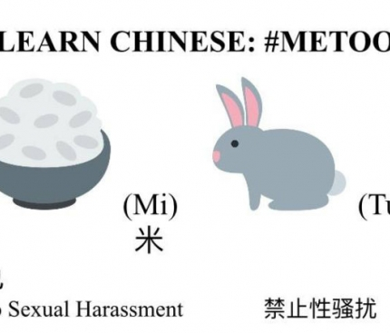 What's MeToo in Chinese?