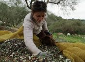 Feb. 13, 2018 - Sterna, Messinia, Greece - Margianna Xirogianni, a 33-year-old medical physicist, left the city with her siblings to become a farmer after the economic crisis started in Greece